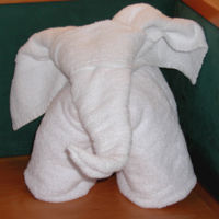 ElephantTowel