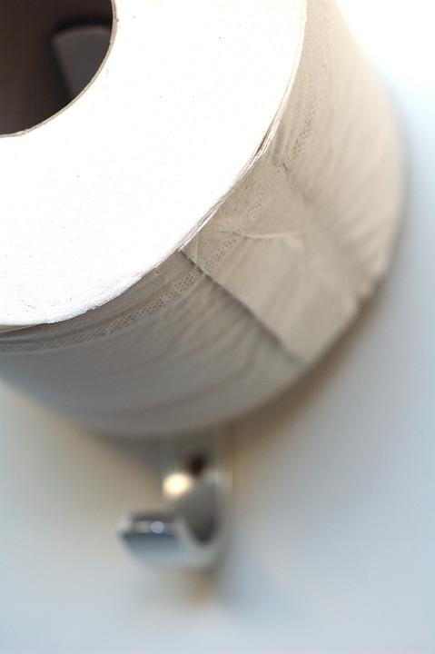 toilet-paper-2613704_960_720